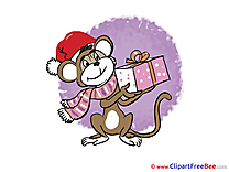 Scarf Monkey Cliparts New Year for free