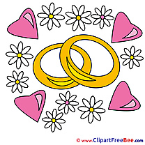Rings Chamomiles Clip Art download Hearts