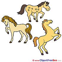 Animals free Illustration Horse