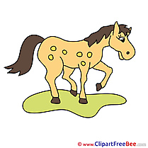 Beautiful Clipart Horse free Images