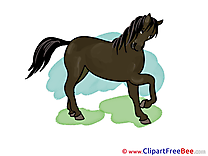 Clipart Horse free Images
