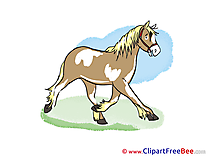 Cliparts Horse for free