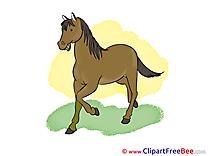 Grass free Illustration Horse