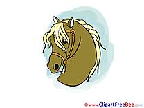 Head Clip Art download Horse