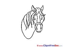 Head Horse download Illustration