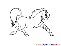 Horse Coloring Illustrations for free