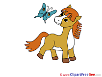 Little Pony Clipart Horse Illustrations