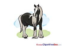 Pics Horse free Cliparts