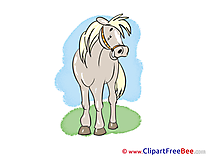 Smiling Horse Illustrations for free