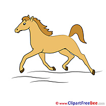 Trot Horse Illustrations for free