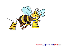 Bee Clipart free Illustrations
