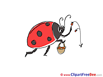 Berries Ladybug Clipart free Image download