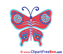 Butterfly Pics download Illustration