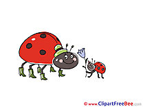 Flower Ladybugs free printable Cliparts and Images