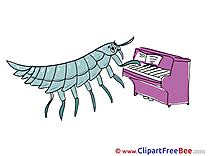 Bug plays Piano free Cliparts Kindergarten