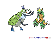 Bugs Orchestra Pics Kindergarten free Image