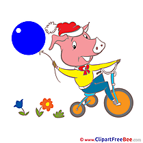 Pig on Bicycle Pics Kindergarten Illustration