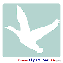 Bird Clipart Pictogrammes Illustrations