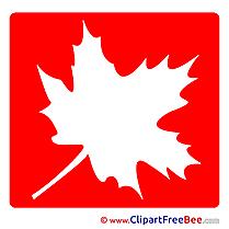 Maple Leaf Pics Pictogrammes free Image