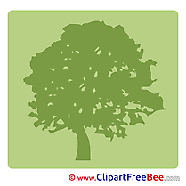 Tree Pictogrammes free Images download