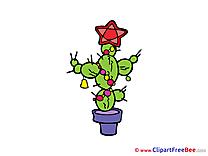 Cactus Pics free Illustration