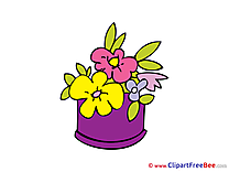 Flowers Pics download Illustration