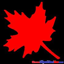 Maple Leaf Pics download Illustration