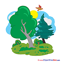 Nature Trees Clipart free Illustrations