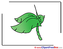 Palm Leaves download Clip Art for free