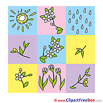 Image Flowers Sun Rain Images download free Cliparts
