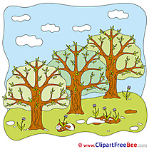 Park Trees Clipart free Image download