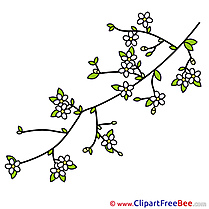 Spring Branch Clipart free Illustrations