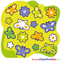 Butterflies Summer Illustrations for free
