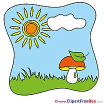 Clip Art Mushroom Leaf download Summer