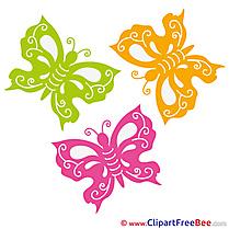 Clipart Butterflies Summer Illustrations