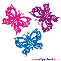 Free Butterflies Illustration Summer