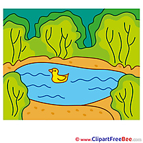 Pond Duck Pics Summer free Cliparts
