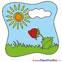 Strawberry Sun free Illustration Summer