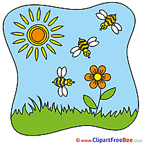 Sun Bees download Clipart Summer Cliparts