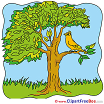 Tree Bird Cliparts Summer for free