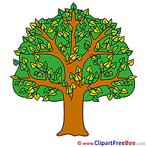 Tree Clipart Summer free Images