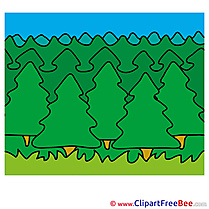 Woods Summer Clip Art for free
