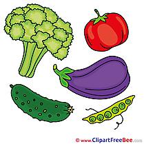 Broccoli Vagatables free Illustration download