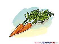 Carrots Pics free download Image