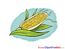 Corn Clip Art download for free