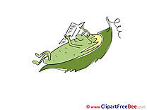 Cucumber Newspaper Clipart free Image download