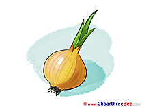 Image Onion free printable Cliparts and Images