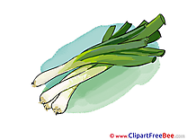 Leek Images download free Cliparts