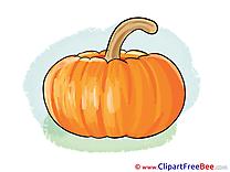 Pumpkin Pics free Illustration
