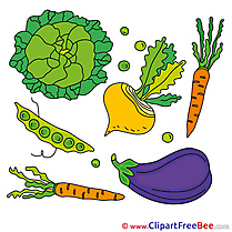 Vegatables Carrot Auvergine Pics free Illustration